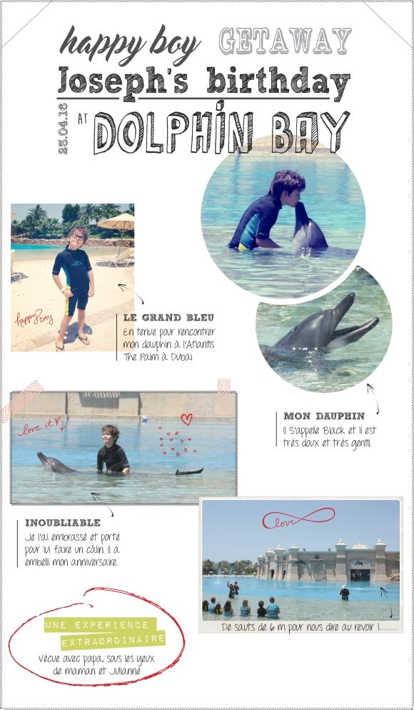 memo-dolphin-Jo
